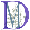 Dancemeditation™ logo