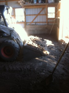 Barn Floor, Removing Dirt