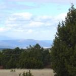 Mesa Top Meadow & Sangre de Cristo Mountains